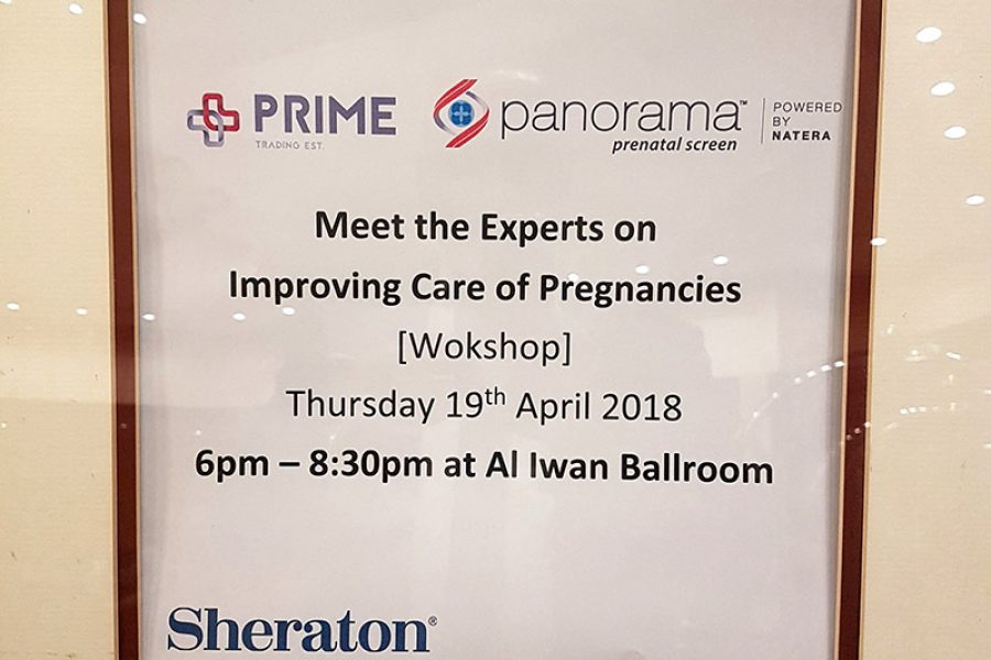 """Meet the Experts on Improving Care of Pregnancies"" Workshop"